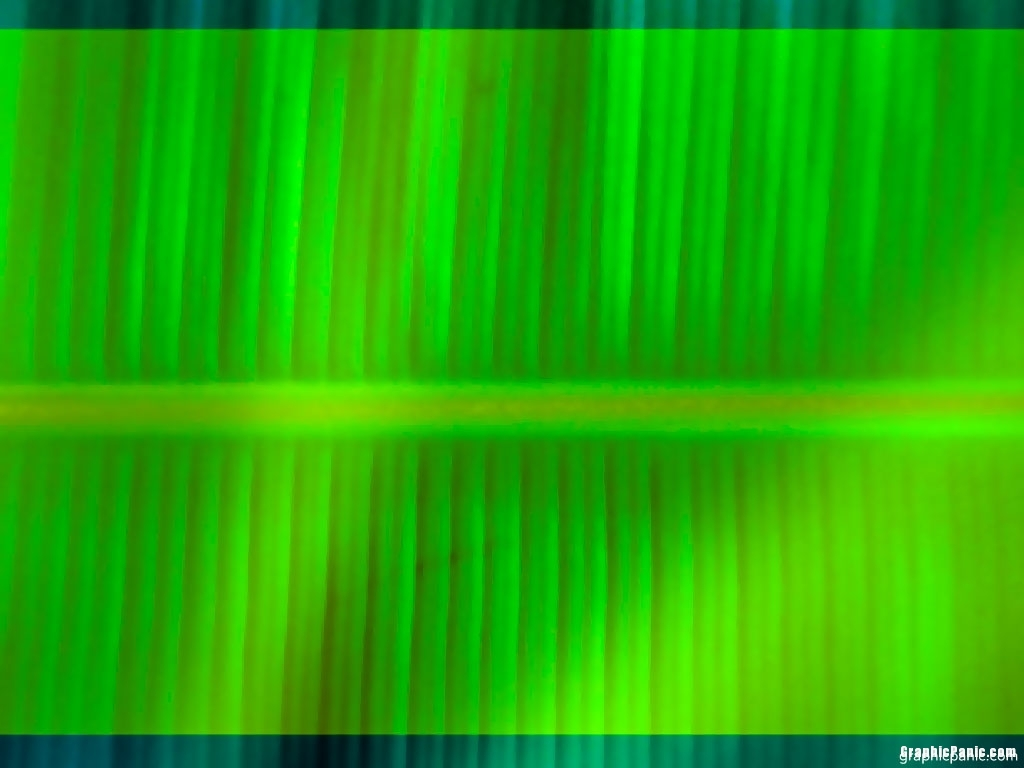 banana leaves backgroundImage size: 1024 x 768 pixels