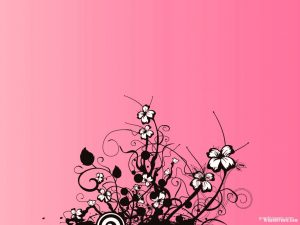 flower on pink background