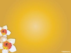 yellow flower powerpoint background