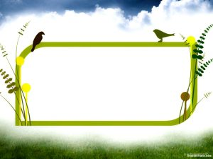 birds with frame powerpoint background