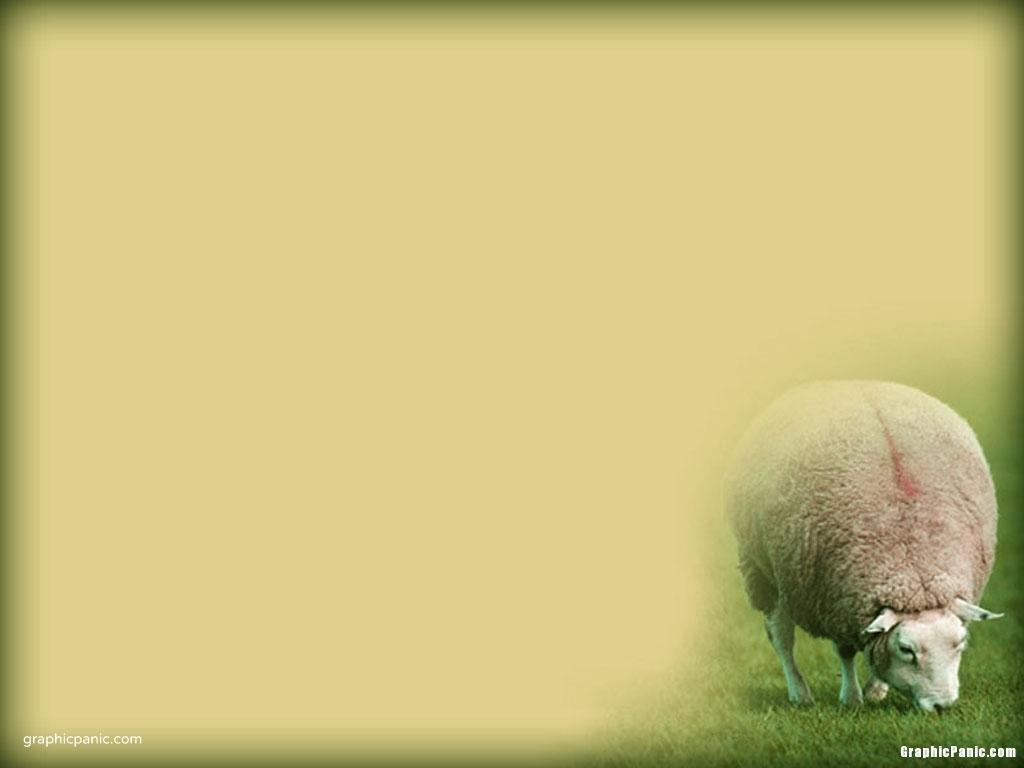 christian sermon background