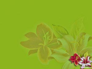 flower powerpoint background