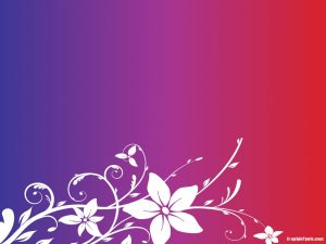purple and red background