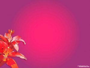 red flower background
